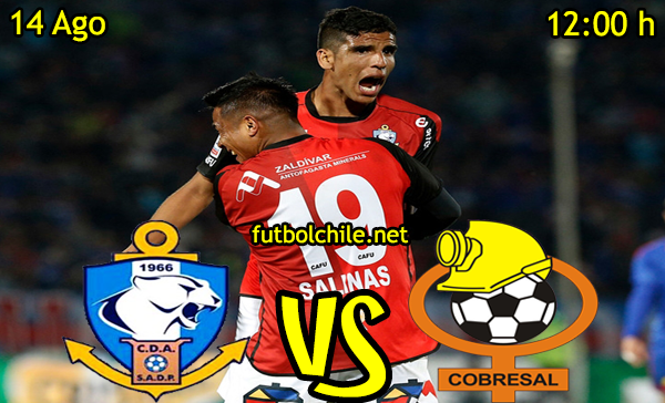 Ver stream hd youtube facebook movil android ios iphone table ipad windows mac linux resultado en vivo, online: Deportes Antofagasta vs Cobresal,