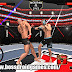 MMA Fighting Clash Mod Apk