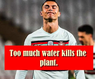 Too much water kills the plant.