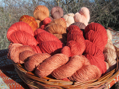 tintura naturale lana corso corsi colori naturali