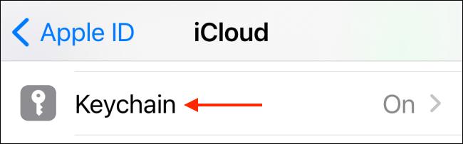 اضغط على Keychain من إعدادات iCloud
