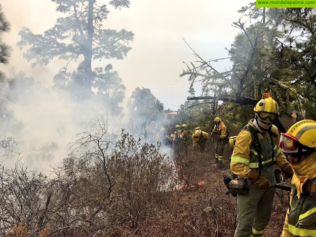 El Gobierno de Canarias declara el nivel 2 y asume la dirección del incendio forestal declarado en La Palma