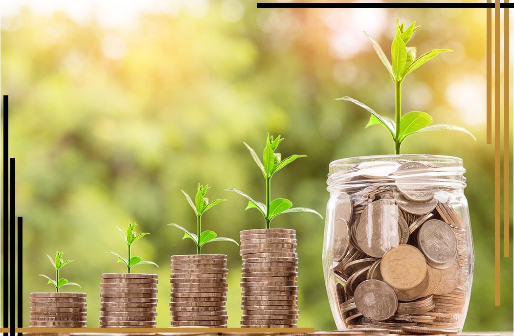 زيادة هامش الربح زيادة الربحية ريادة الأعمال