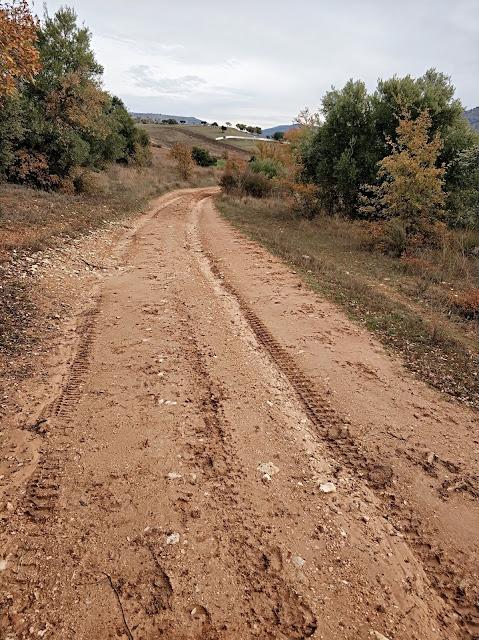 Camino Cozagón