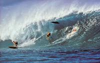 Jeff divine fotografo jeffdivinesurf 44