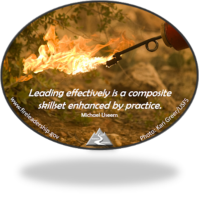 Leading effectively is a composite skillset enhanced by practice. - Michael Useem (lit drip torch)