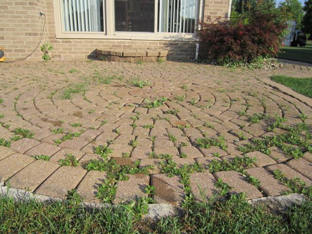 brick doctor bill simple pavers patio