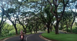 sepanjang jalan menuju Taman Dayu