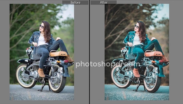 Top 50+ Popular Camera Raw Presets For Photo Editing In Photoshop