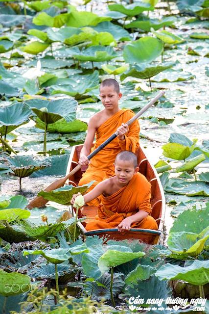 Lời Phật dạy: Sống trên đời, nhất định phải biết 12 báo ứng trực tiếp này, đọc để mà tránh