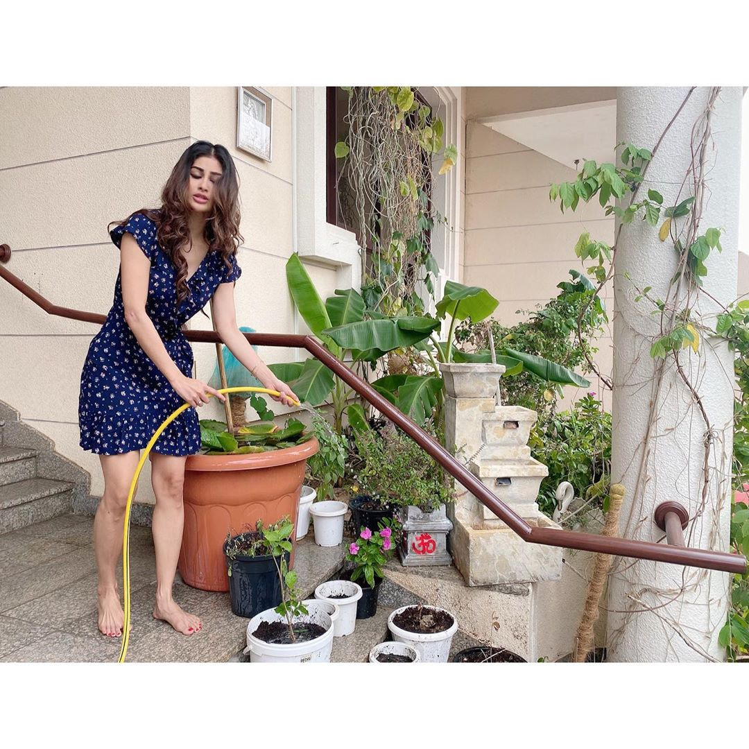 mouni-roy-pouring-water-into-tree-plants-picture-goes-viral