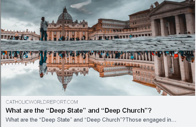 https://www.catholicworldreport.com/2020/07/08/what-are-the-deep-state-and-deep-church/