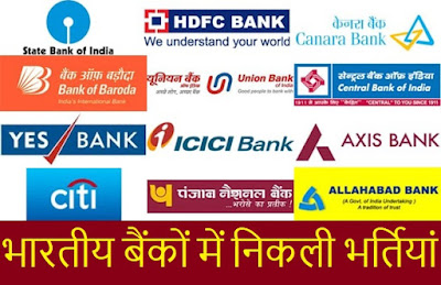 Latest Bank Govt Jobs | IBPS Jobs Recruitment