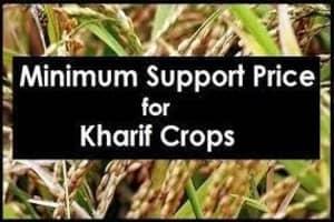 खरीफ फसल MSP 2021-22: गेहूं/धान और अन्य फसलों की नई रेट लिस्ट