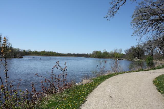 Fox River Forest Preserve in Port Barrington, IL