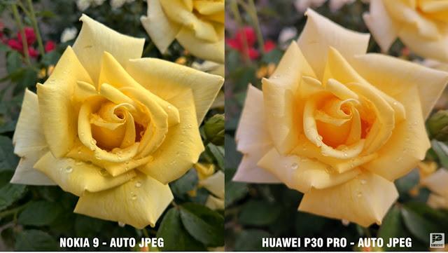 VS photo entre le Nokia 9 PUREVIEW, LE HUAWEI P30 PRO et le LUMIA 950