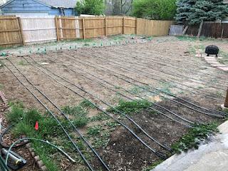Drip irrigation system being installed