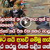 Tsunami Village Snake incident - (Watch Video)