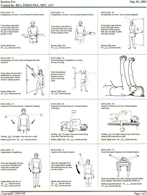Chair Gym Exercise Manual Office Adjustable Height Exclusive Physiotherapy Guide For Physiotherapists: Shoulder Strengthning