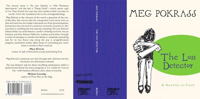 Indie Spotlight: Meg Pokrass