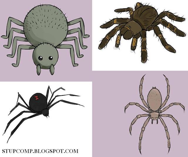 أفضل طريقة لرسم العنكبوت بسهولة مدونة الويب Webbloog