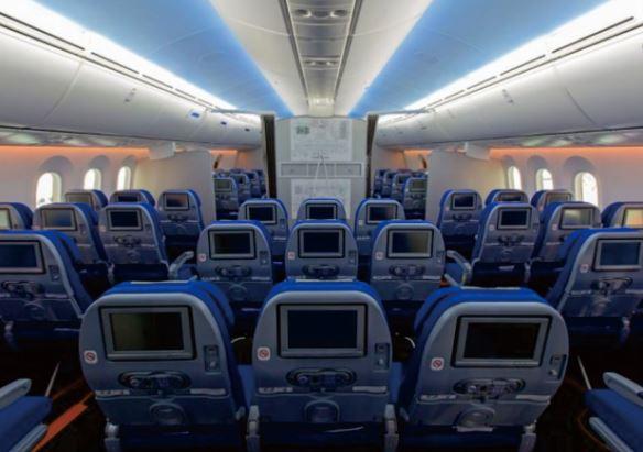 American Boeing Plane 787