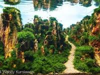 Pasir Silika Aquascape Ady Water | Berkualitas, Banyak Pilihan dan Ready Stok di Jakarta Bandung Surabaya