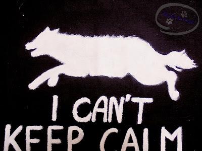 """Adzik tworzy - ręcznie malowana torba z psem """"I can't keep calm"""""""