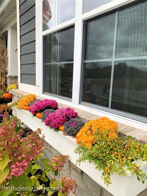 tips for fall window boxes and planters