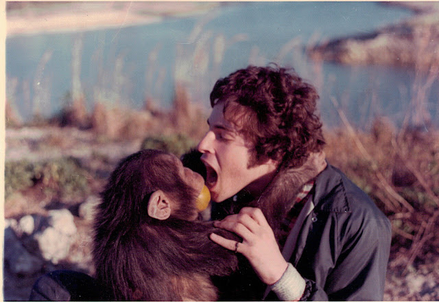 Lions and Tigers and Hamsters: An Interview with Dr. Mark Goldstein. Photo shows Dr. Mark with a chimp