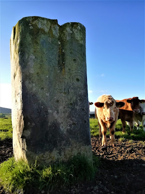 The Ardmore Stone