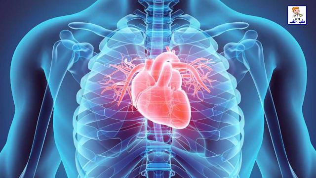 خفقان القلب,علاج خفقان القلب,القلب,خفقان القلب بعد الاكل,خفقان القلب المفاجئ,أمراض القلب,ضربات القلب,علاج خفقان القلب وضيق التنفس,اسباب خفقان القلب,ضربات القلب السريعة,علاج ضربات القلب السريعة,دقات القلب,علاج,خفقان القلب اسبابه