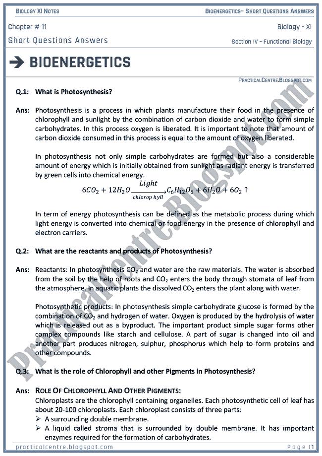 Bioenergetics - Short Questions Answers - Biology XI