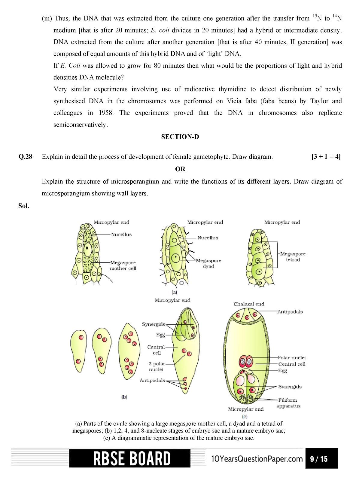 RBSE class 12th 2017 Biology question paper with solution