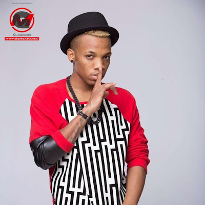 Tekno - Jogodo (2018) | Download Mp3
