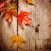 Die neuen Herbst-Balsamicos kommen
