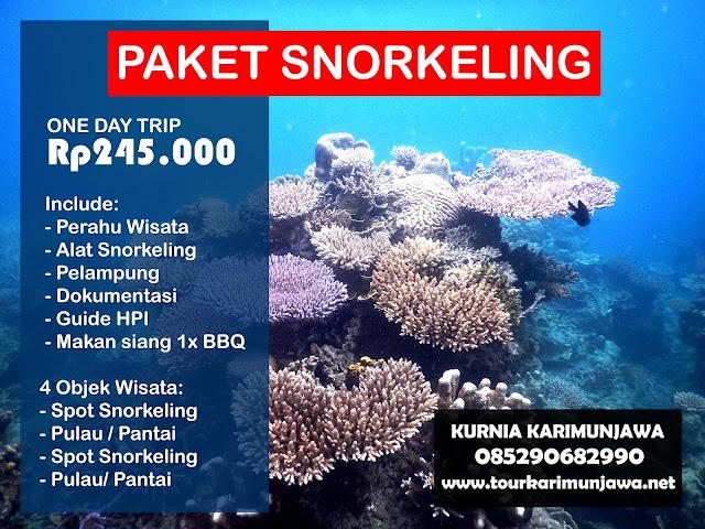 Paket Snorkeling 1 Hari
