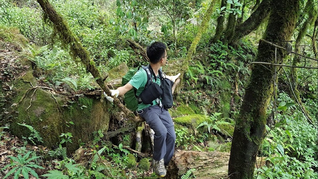 Conquer the most beautiful trekking roads in Vietnam 2