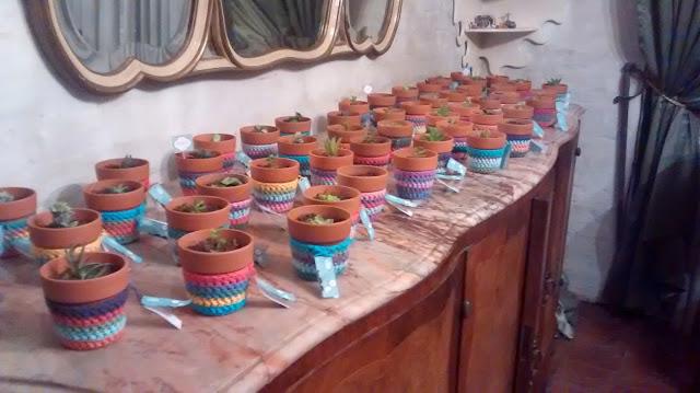 souvenir maceta plantita