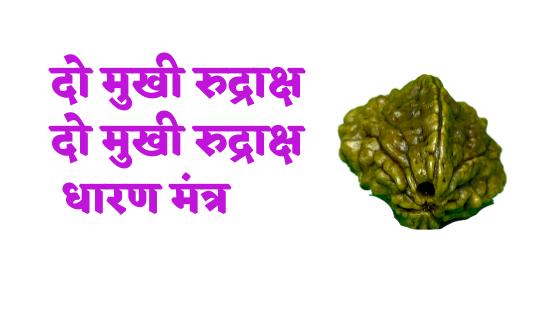 दो मुखी रुद्राक्ष धारण मंत्र  | दो मुखी रुद्राक्ष धारण करने की विधि | Do Mukhi rudraksah mantra |