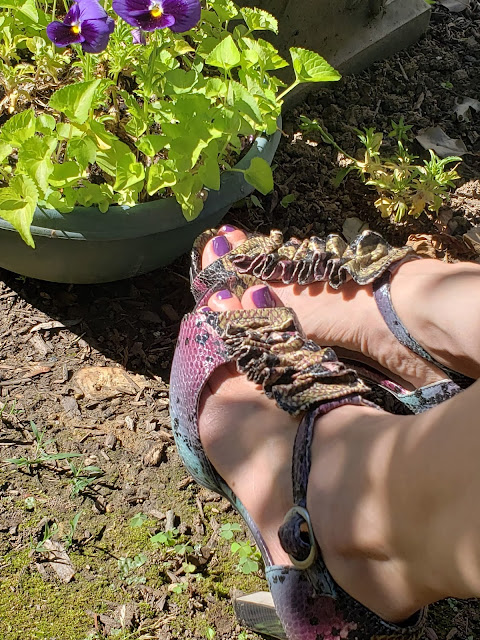 Zoya Jessica in ruffled T-strap peep-toe heels