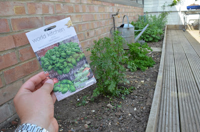 Packet of basil seeds next to prepared herb bed