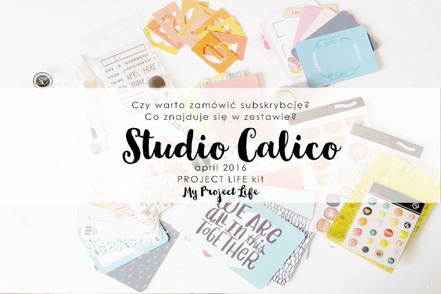 Studio Calico Documentary Kit