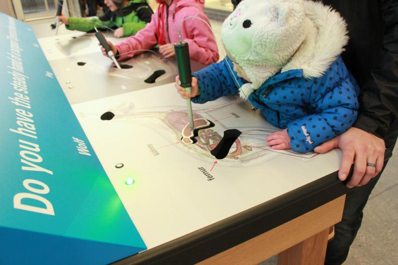 Toronto Zoo Wildlife Health Centre children activities