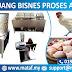 Peluang Bisnes Proses Ayam