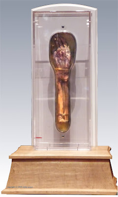 Incorrupt Arm of St Francis Xavier