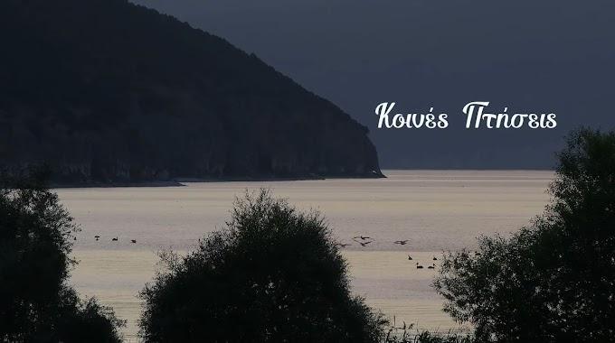 «Κοινές Πτήσεις» 30 λεπτά γεμάτα υπέροχες εικόνες από τα μοναδικά τοπία της Πρέσπας. (VIDEO)