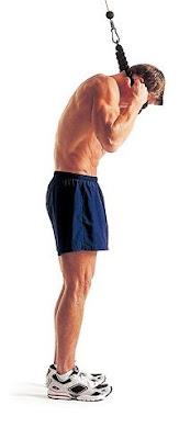 ejercicios abdominales en polea alta