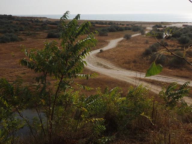 Droga na plażę Corbu (sierpień 2016)
