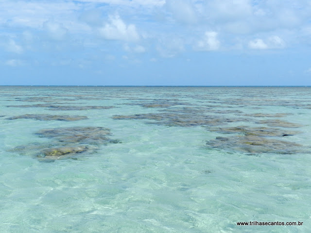 Piscinas de corais